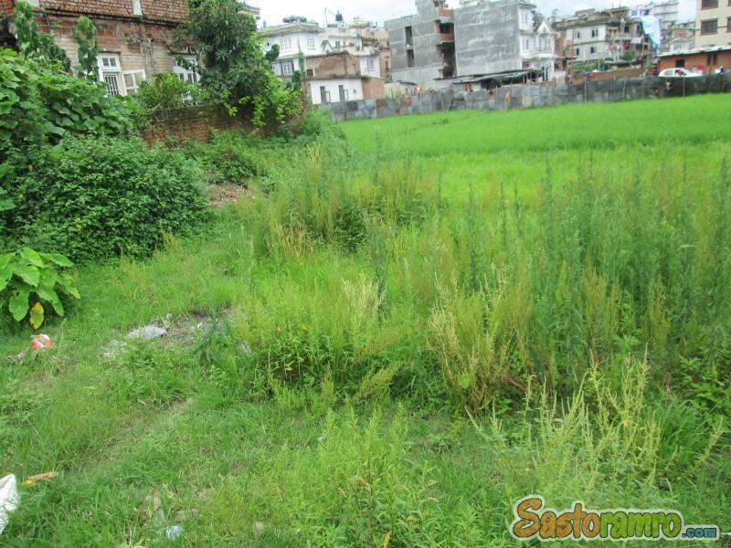 Land on Sale at Sukedhara
