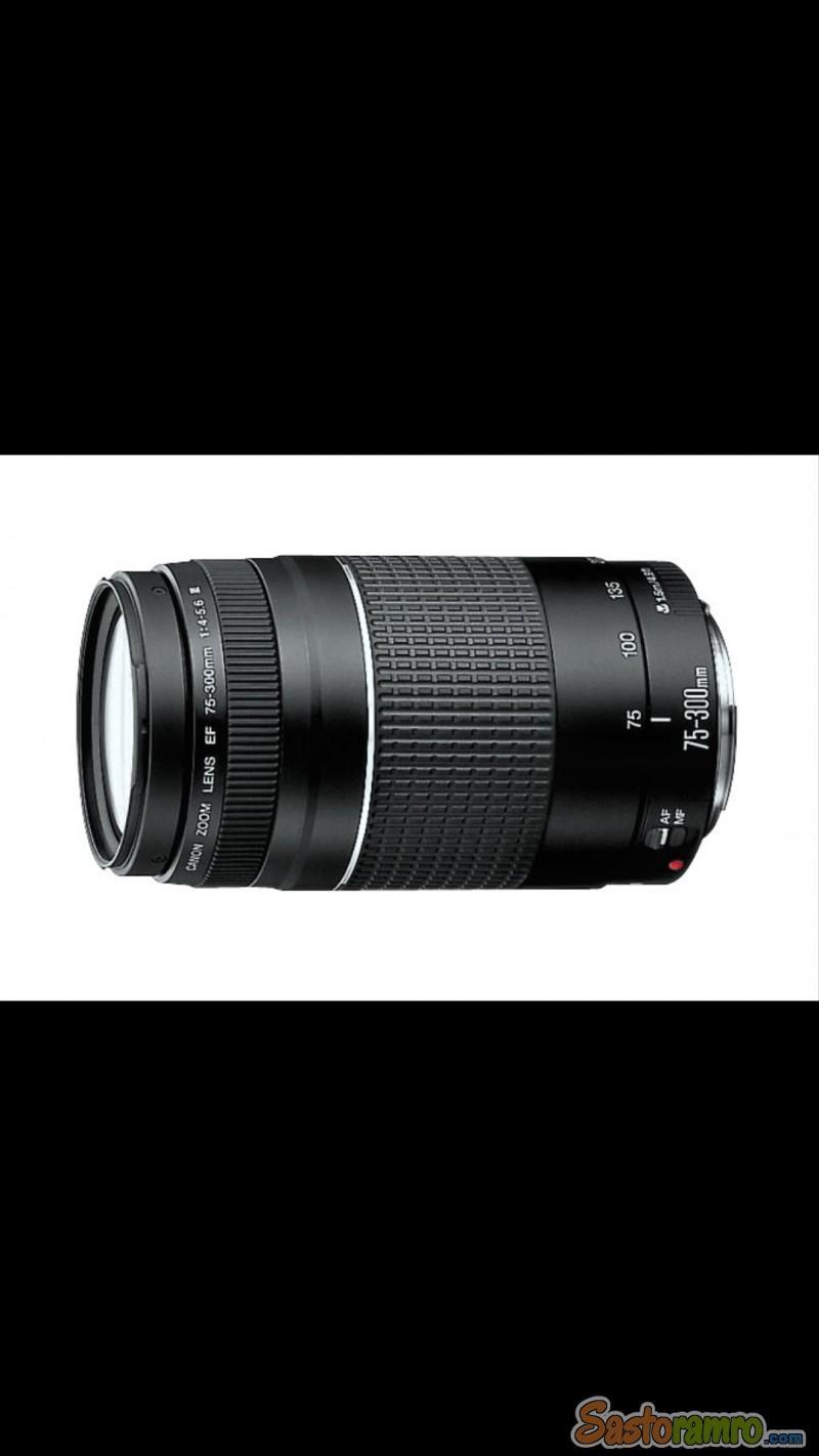 Canon EF 75–300mmf/4–5.6 lens