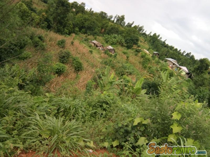 7 ropani land at Hetauda
