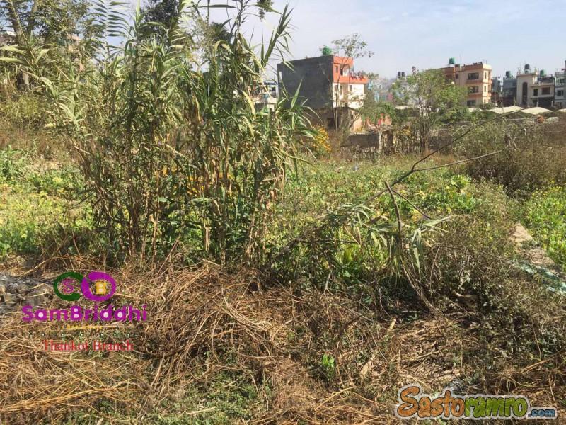 5 ana land at Satungal