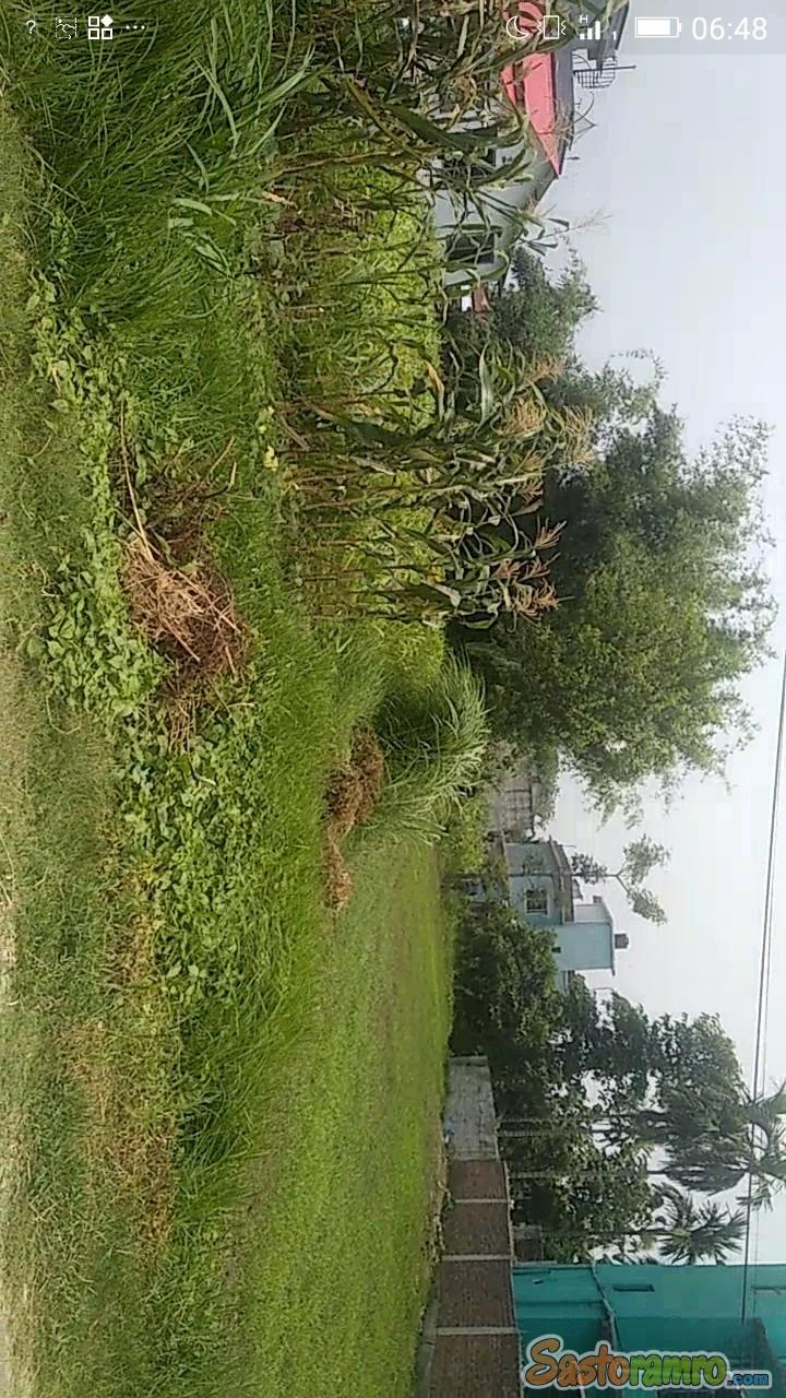 Land at Birtamod Anarmani