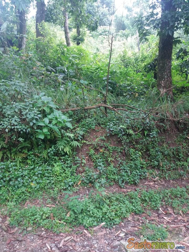 Looking for 5 ropani land at Pokhara