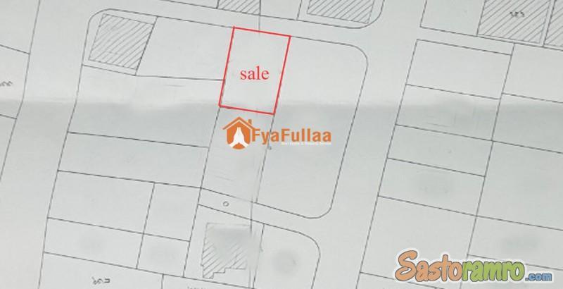 Land sale in Nayabazar