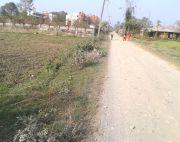 11 Kattha or 7.5 ropani land for sale or rent at Bharatpur Narayani