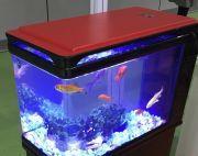 Red Q3-500 fish tank