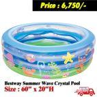Baby Swimming Pool 60