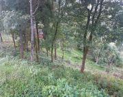 7 ropani 12 ana land at Nagarkot