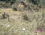 2.5 ana land on sale at Matatirtha
