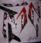 Rtr 200 4v sticker