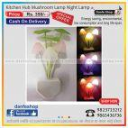 kitchen mushrum night lamp