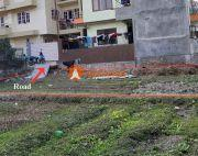 Land sale in Jarankhu